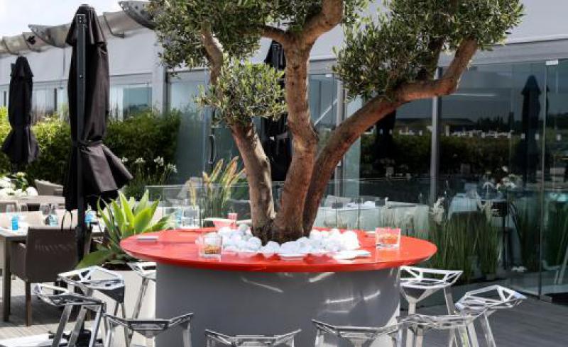 CFM chalet Salon du SIAE terrasse